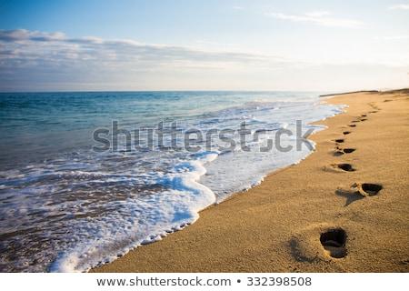 Foot prints on the beach Stock photo © bmonteny