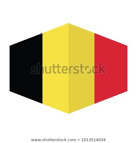 Бельгия флаг шестиугольник икона кнопки Мир Сток-фото © gubh83