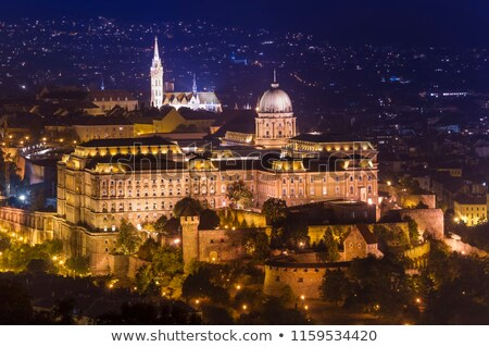 Buda Castle at night Stock photo © pixachi