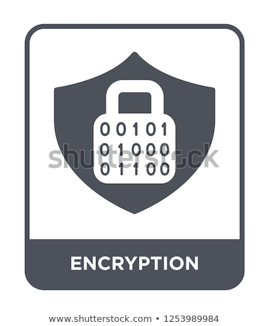 Data Encryption Stock photo © Lightsource