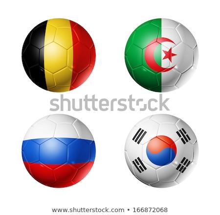 Brazil 2014 world cup group H Stock photo © jelen80