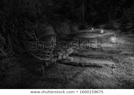 Magic lantern near road in forest stock photo © dariazu