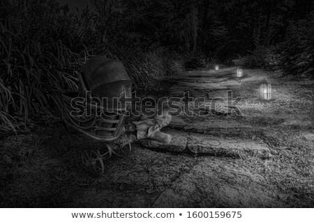 Magia lanterna estrada floresta luz folha Foto stock © dariazu
