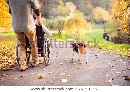 sétál · ki · együtt · csinos · nővér · idős - stock fotó © stevanovicigor