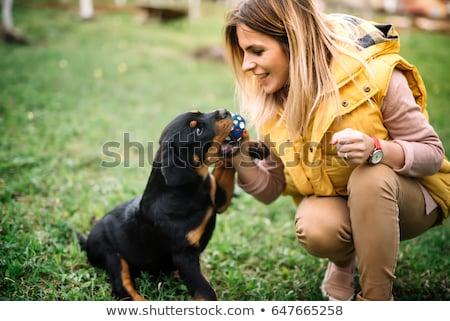 Fiatal nő rottweiler fehér lány mosoly szeretet Stock fotó © cynoclub