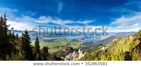 Aerial view over Lake Forggensee Stock photo © manfredxy