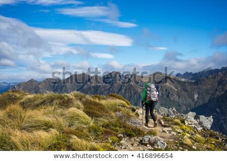 woman hiking at Kepler track Stock photo © lostation