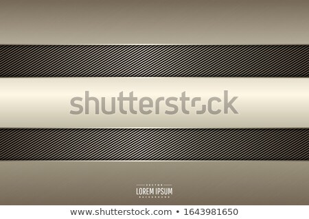 metal and carbon background Stock photo © nickylarson974