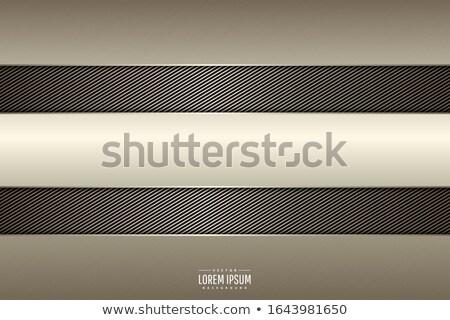 Metal carbonio illustrazione design texture abstract Foto d'archivio © nickylarson974