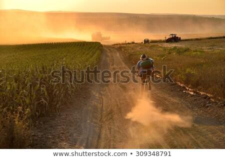 Traktor búzamező mezőgazdasági tájkép égbolt étel Stock fotó © OleksandrO