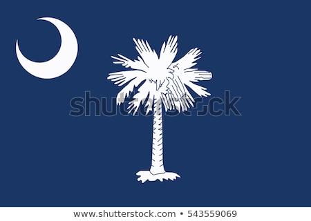 Vlag zuiden icon geïsoleerd witte 3d illustration Stockfoto © MikhailMishchenko