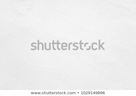 Sucia blanco yeso pared textura Foto stock © Juhku