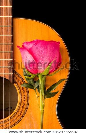 1 バラ 古い ギター 黒 花 ストックフォト © Valeriy