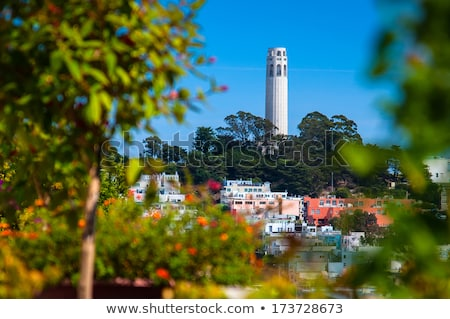 Coit Tower and Telegraph Hill Stock photo © dirkr