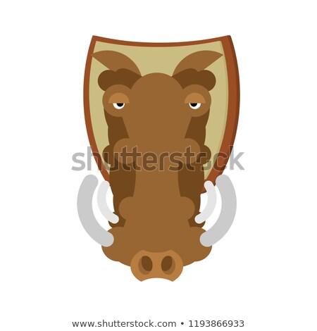 Caza trofeo cabeza verraco escudo Foto stock © popaukropa