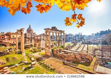 遺跡 · ローマ · フォーラム · 夏 · イタリア · 市 - ストックフォト © givaga