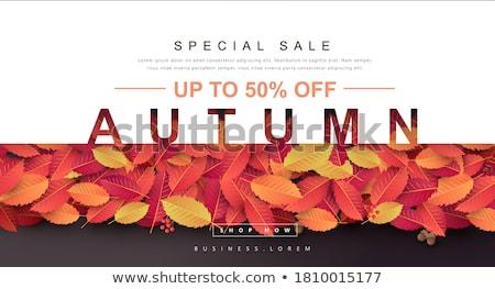 ősz vásár dekoráció szalag arany levelek Stock fotó © alexaldo