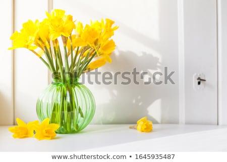 Verwonderd narcis cartoon illustratie naar bloem Stockfoto © cthoman