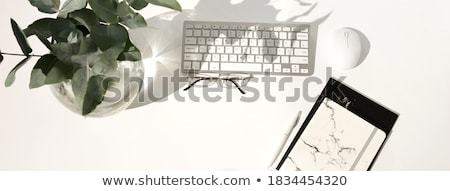 klaprozen · witte · voorjaar · ontwerp · zomer · groene - stockfoto © ruslanshramko