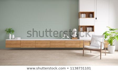 üres tv faliszekrény nappali elöl kilátás Stock fotó © magraphics