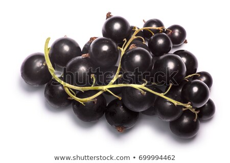 Blackcurrants Ribes nigrum clusters, top view, paths Stock photo © maxsol7