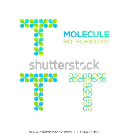 DNS ikon kör molekuláris struktúra vektor Stock fotó © kyryloff