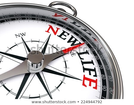 compass on white background truth concept stock photo © make