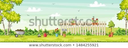 Garden Tools Background Illustration Stock photo © lenm