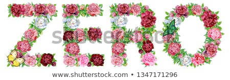 word zero of watercolor peonies flowers and butterflies stock photo © natalia_1947