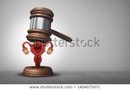 avortement · droit · justice · juridiques · reproduction · droits - photo stock © lightsource
