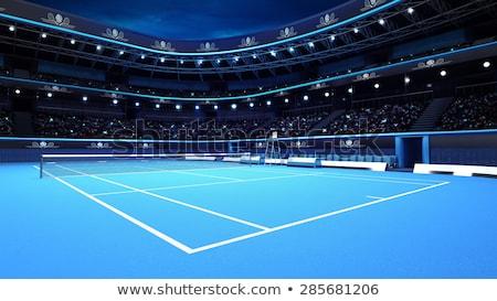 Teniszlabda sportok játszótér stadion fehér vonal Stock fotó © pressmaster