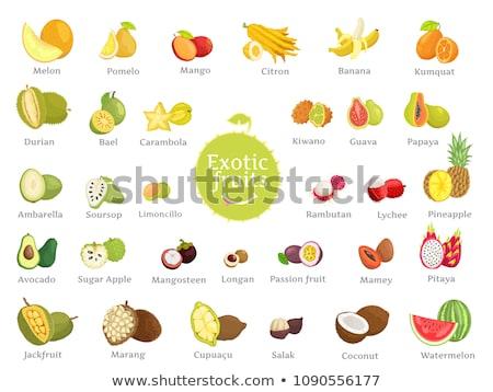 Exotic Fruits Durian Apple Papaya Citron Vector Stock photo © robuart