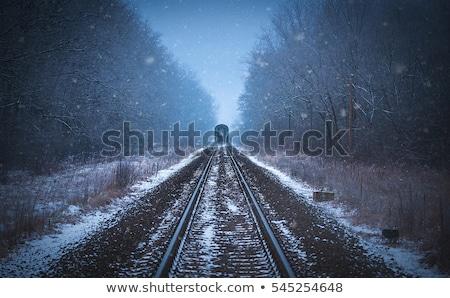 Neve cena trem noite ilustração céu Foto stock © bluering