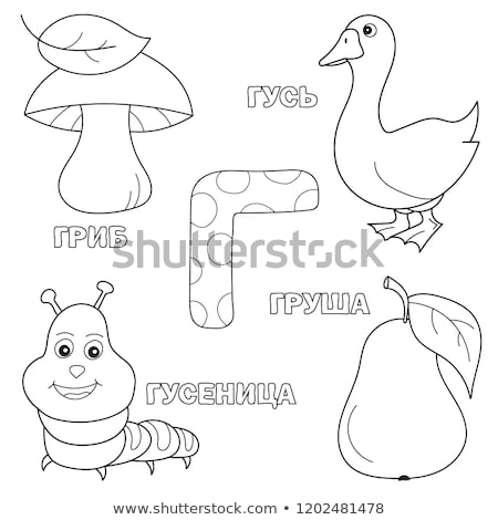 Oktatási feladat kifestőkönyv feketefehér rajz illusztráció Stock fotó © izakowski