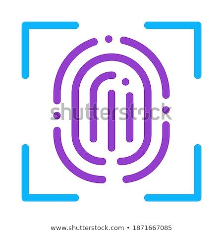 сканирование отпечатков пальцев икона вектора Сток-фото © pikepicture