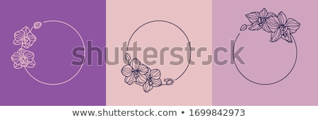 Set of floral flat style Stock photo © Olena