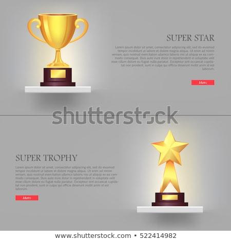 Trofee uitrusting gouden beker eerste plaats vector Stockfoto © robuart