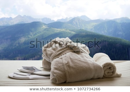 Spa in mountains Stock photo © olira