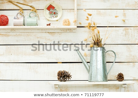 plants on white rough wooden wall as decoration stock photo © ansonstock