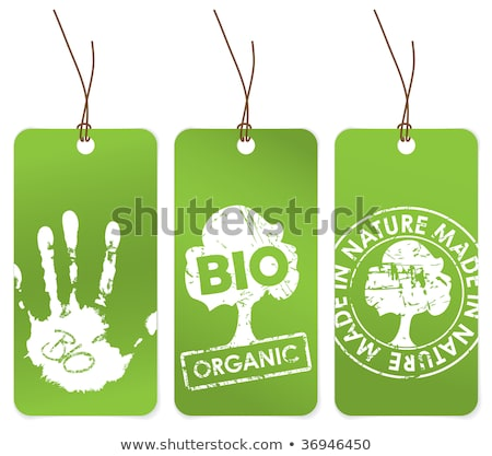 set of three green tags for organic stock photo © orson