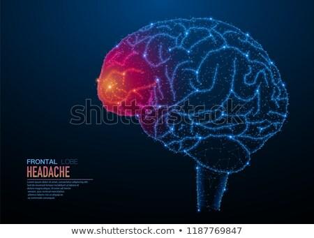 Сток-фото: Brain Head Ache