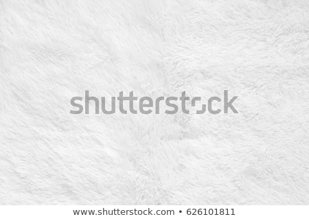 shaggy carpet background Stock photo © smithore