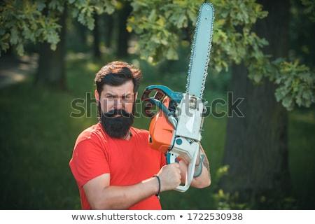 muscular woodcutter Stock photo © csakisti