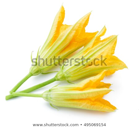 Courgettes with flowers Stock photo © oksix