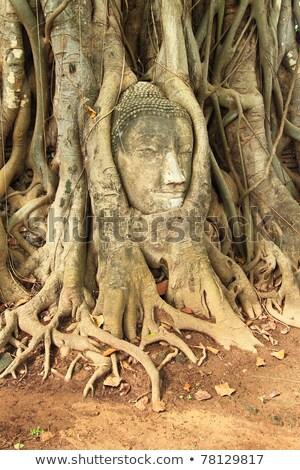 head of sandstone buddha stock photo © witthaya