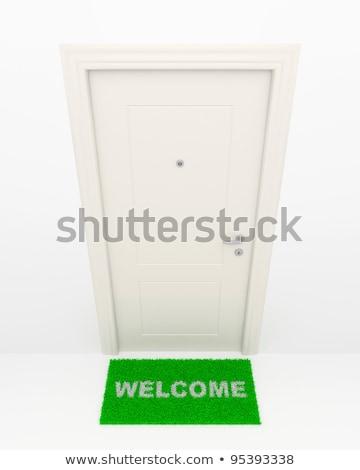 Kapalı kapı yeşil ot çim dizayn alan Stok fotoğraf © MikhailMishchenko