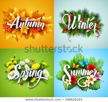Vektör mevsimlik posterler dört yıl mevsim Stok fotoğraf © vitek38