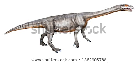 Massospondylus Dinosaur Stock photo © AlienCat