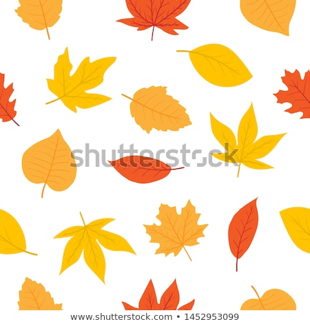 Stock photo: Autumn colors fabric texture backgrounds for cards, tags, banners