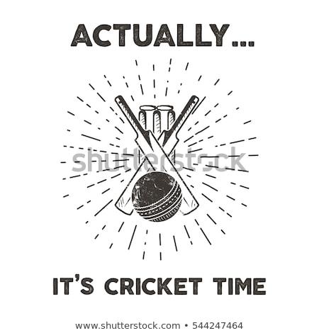 krikett · sport · bélyeg · klasszikus · stílus · labda - stock fotó © squarelogo